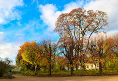 Mikhailovskoye Pushkin kullar Royaltyfri Bild