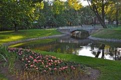 Mikhailovsky trädgård i St Petersburg Arkivbild