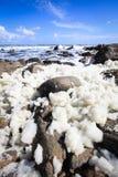 Miękka ocean piana na porowatych skałach Obrazy Stock