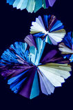 Mikro kryształy 3 zdjęcia royalty free