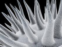 Mikroben lizenzfreie abbildung