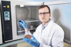 Mikrobiolog ręka kultywuje Petri naczynia whit oczkowanie zapętla, obok autoklawu Obraz Stock