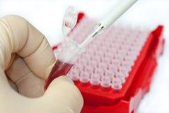 Mikrobiologie Stockfoto