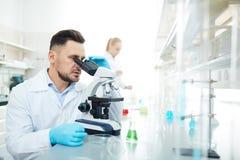 Mikrobiologisk forskning Arkivbilder