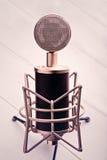 Mikrofon 1 fotografering för bildbyråer