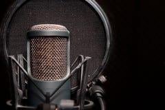 Mikrofon Checka stockfotos
