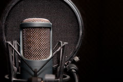 Mikrofon Checka Zdjęcia Stock