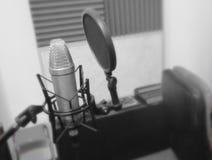 Mikrofon i ett musikinstrument för inspelningstudio Royaltyfri Bild