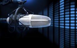 Mikrofon und Analysator lizenzfreies stockfoto
