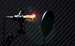 Mikrofonkondensatorljud - absorberande v?ggrum arkivbilder
