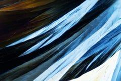 Mikrokristaller Fotografering för Bildbyråer
