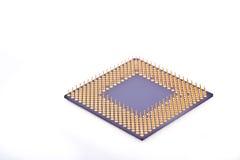 mikroprocessor Arkivfoto