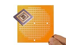 Mikroprozessor- und Chipmaske in der Hand Stockfoto