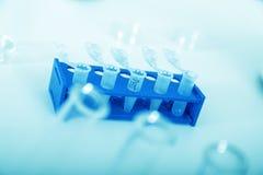 Mikrorör med biologiska prövkopior i laboratorium Fotografering för Bildbyråer