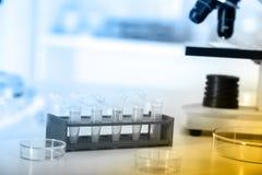 Mikrorör med biologiska prövkopior i laboratorium Arkivfoto