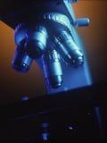 Mikroskop Royaltyfria Foton