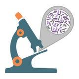 Mikroskop bakterie Obraz Royalty Free