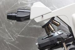 Mikroskop i bio labb Arkivfoto