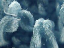 Mikroskopische Gewebebeschaffenheit Lizenzfreie Stockbilder