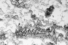Mikroskopisk microcrystal bakgrund Royaltyfri Foto