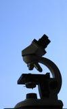 mikroskopsilhouette Arkivbilder