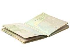 mikroukłady paszportowi obrazy stock