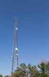 Mikrowellen-Turm, der von den Bäumen steigt Stockfotos