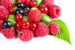 Mikstura dojrzałe soczyste owoc i jagody na białym tle Malinki, rodzynki, agresta zakończenie Piękni owocowi półdupki Obraz Royalty Free