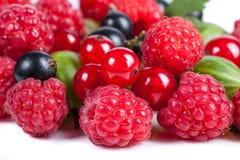 Mikstura dojrzałe soczyste owoc i jagody na białym tle Malinki, rodzynki, agresta zakończenie Piękni owocowi półdupki Fotografia Royalty Free