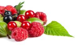 Mikstura dojrzałe soczyste owoc i jagody na białym tle Malinki, rodzynki, agresta zakończenie Piękni owocowi półdupki Obrazy Stock