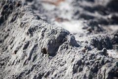 Mikstura piasek i beton jako tło Zdjęcie Stock