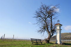 Mikulov countryside royalty free stock images