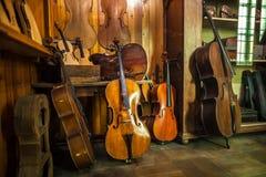 MILÁN, ITALIA - 9 DE JUNIO DE 2016: violines antiguos en la ciencia y Imagen de archivo libre de regalías
