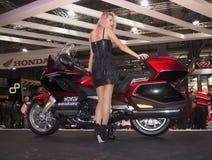 MILÃO, ITÁLIA - 9 DE NOVEMBRO: As poses modelo no motor bike em EICMA, exposição internacional da motocicleta o 9 de novembro de  Imagem de Stock