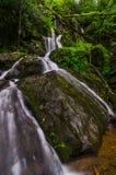 Mil goteos, bifurcación del rugido, Great Smoky Mountains imagen de archivo