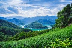 Mil lagos island da plataforma de observação principal de passeio do peixe-gato na represa de Feitsui no distrito de Shiding, Tai Foto de Stock Royalty Free