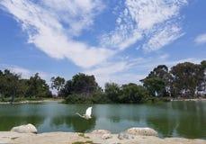 Mila kwadrata park zdjęcie royalty free