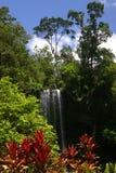 Milaa Milaa Falls Stock Images