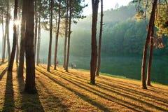 Milagro de la salida del sol Foto de archivo