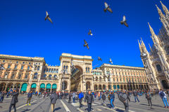 Milan flying pigeons. Milan, Italy - March 7, 2017: flying pigeons in front of the Galleria Vittorio Emanuele II gallery doorway. In Piazza Duomo square Stock Photo