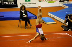 Milan Gymnastic Grand Prix 2008 Royalty Free Stock Photo