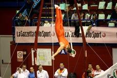 Milan Gymnastic Grand Prix 2008 Royalty Free Stock Photo
