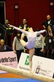 Milan Gymnastic Grand Prix 2008. Event: Gymnastic Grand Prix in Milan, Italy Royalty Free Stock Photos