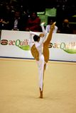 Milan Gymnastic Grand Prix 2008 stock image