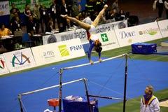 Milan Gymnastic Grand Prix 2008 Stock Photos