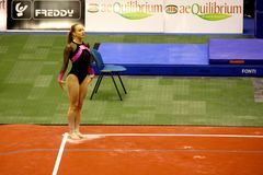 Milan Gymnastic Grand Prix 2008 Royalty Free Stock Images