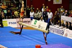 Milan Gymnastic Grand Prix 2008 Royalty Free Stock Photos