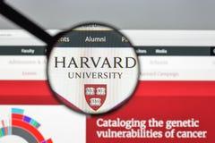 Milan Italien - Augusti 10, 2017: Harvard eduwebsitehomepage Mummel Arkivbild