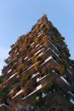 Milan - Sunset on the tower Bosco Verticale, the leaves change color in autumn, Porta Nuova district , Italy royalty free stock photos