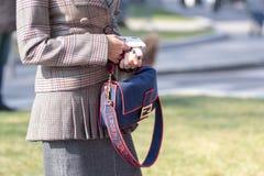 Model wears a plaid jacket and a Fendi bag stock photo
